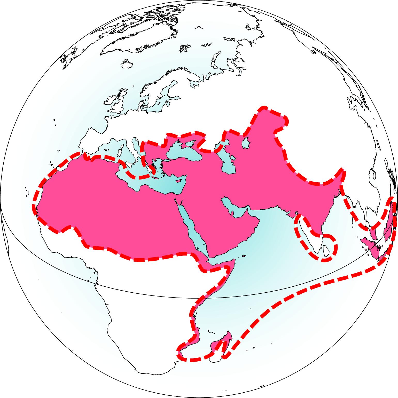 L'Islam en 1700